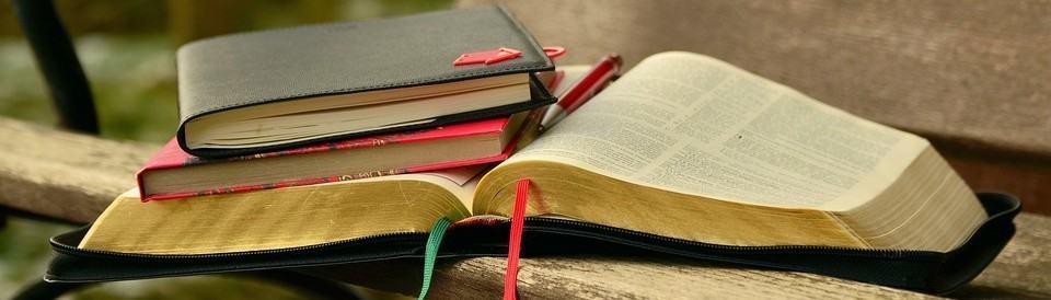 Bibliblog