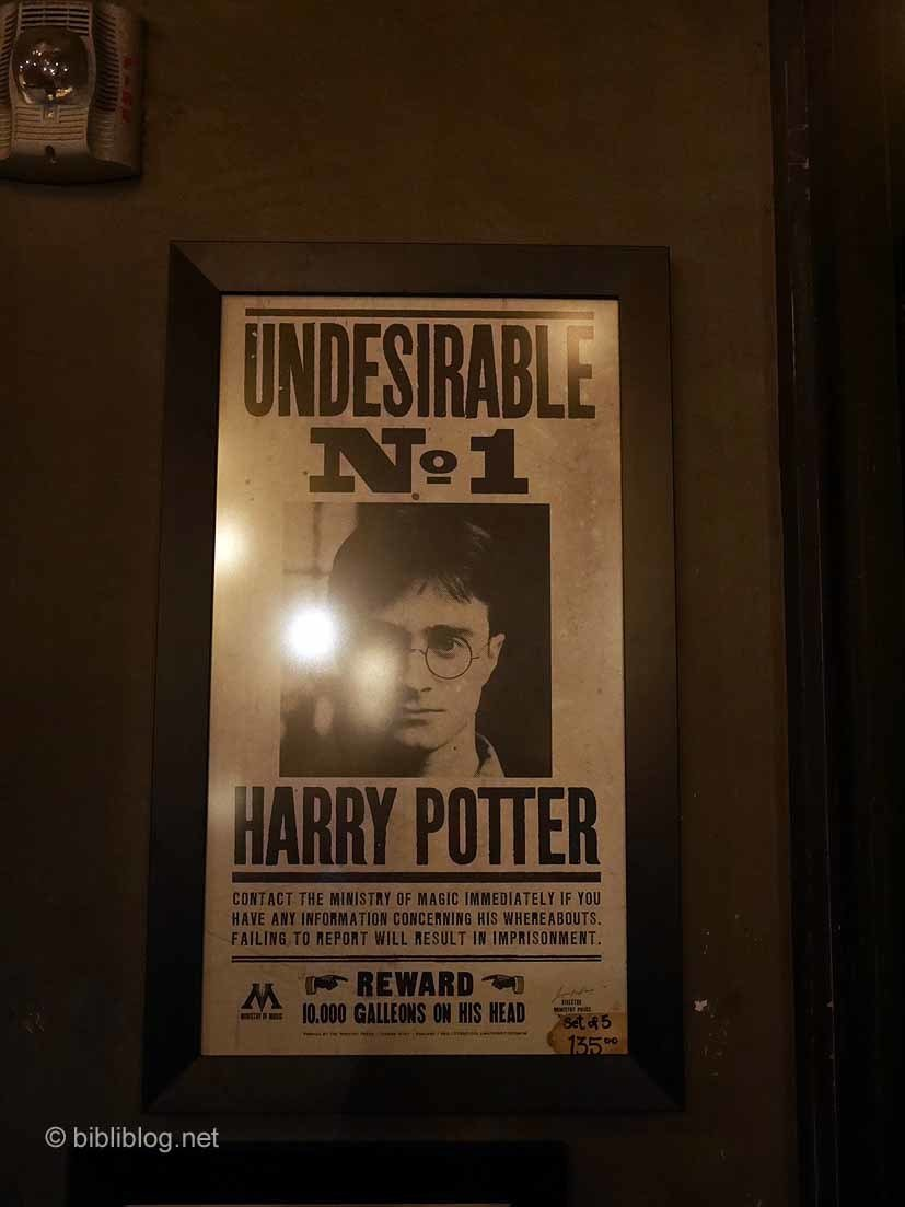 Wanted Harry Potter