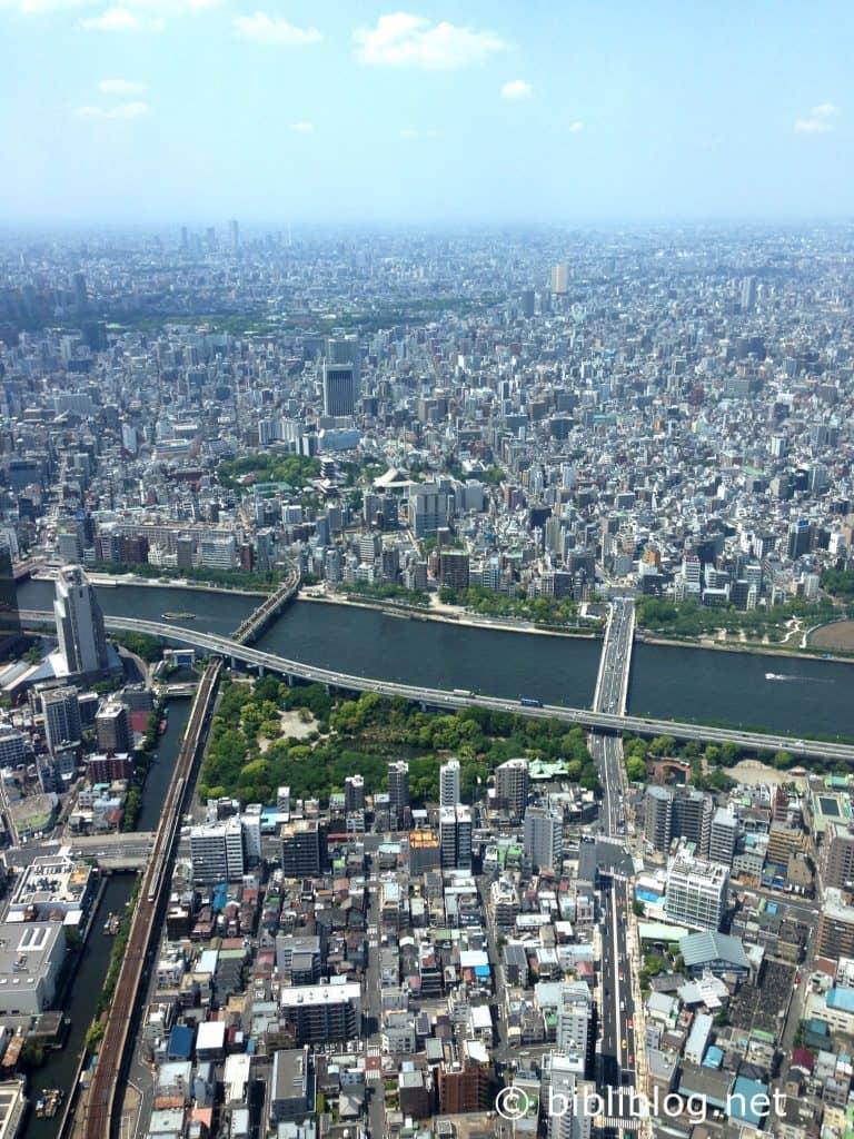 vue-Skytree-1