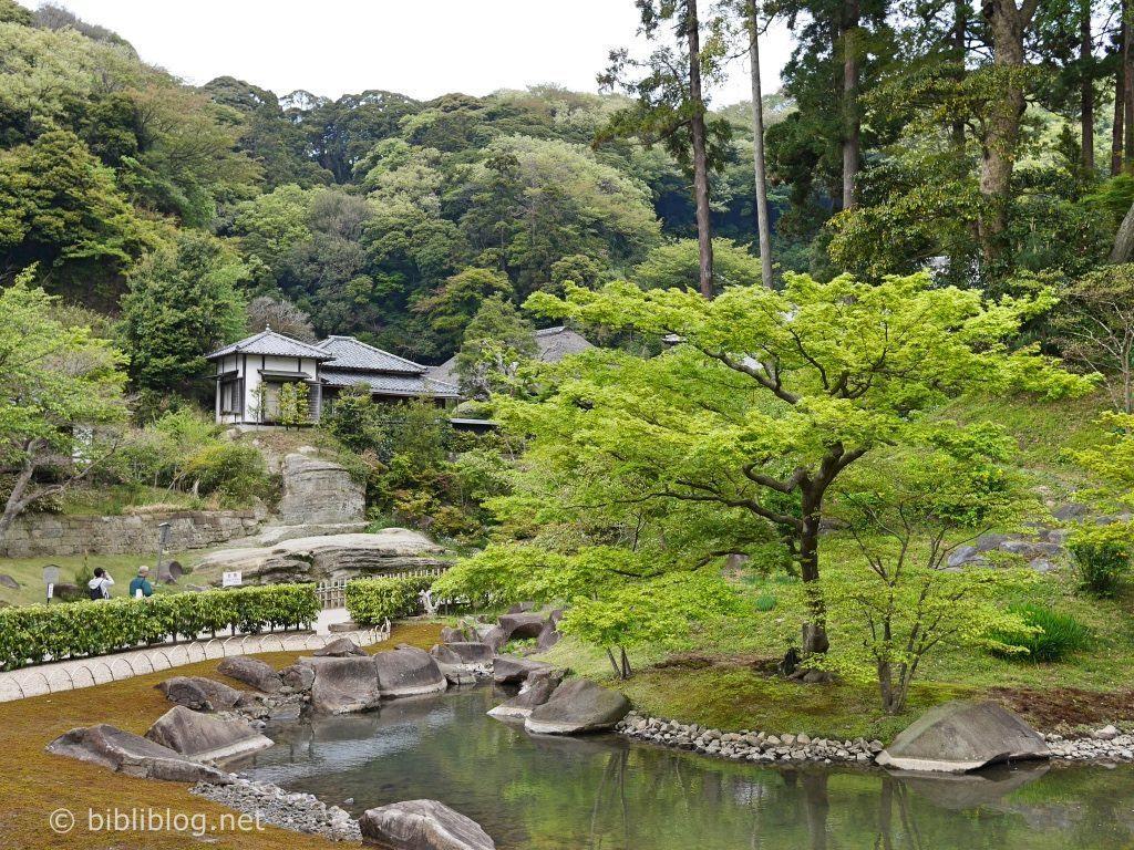 eau-nature-temple