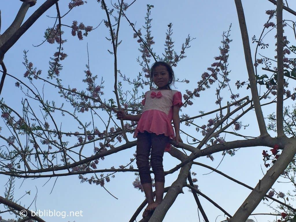 fillette-arbre