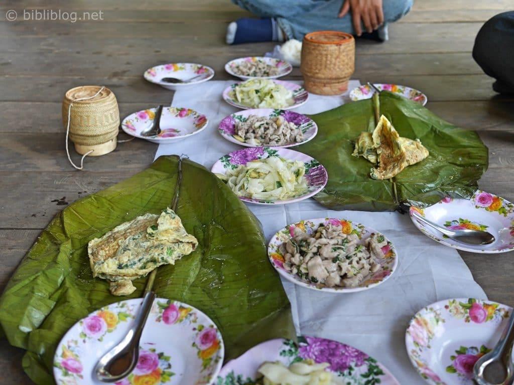 jungle-tad-xai-repas