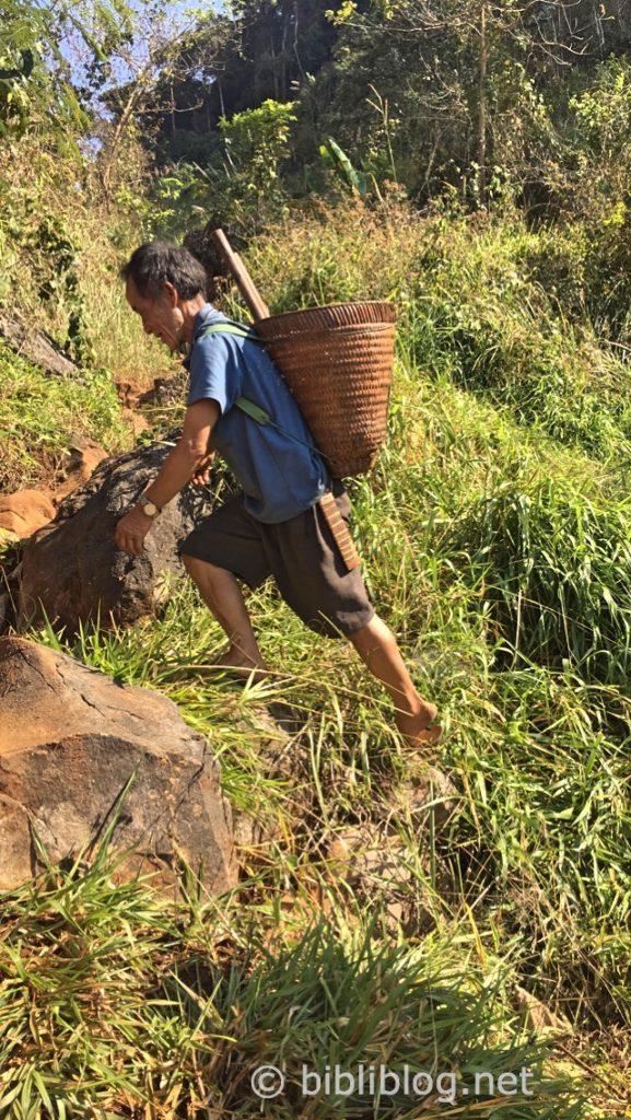 lao-jungle-autochtone