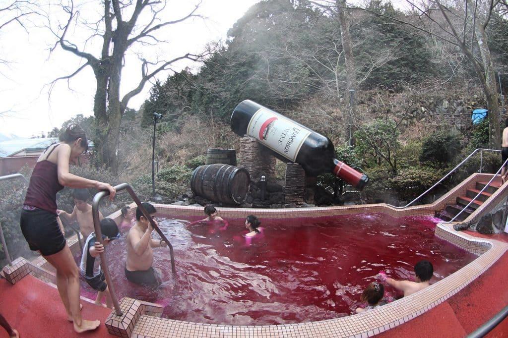 onsen-vin