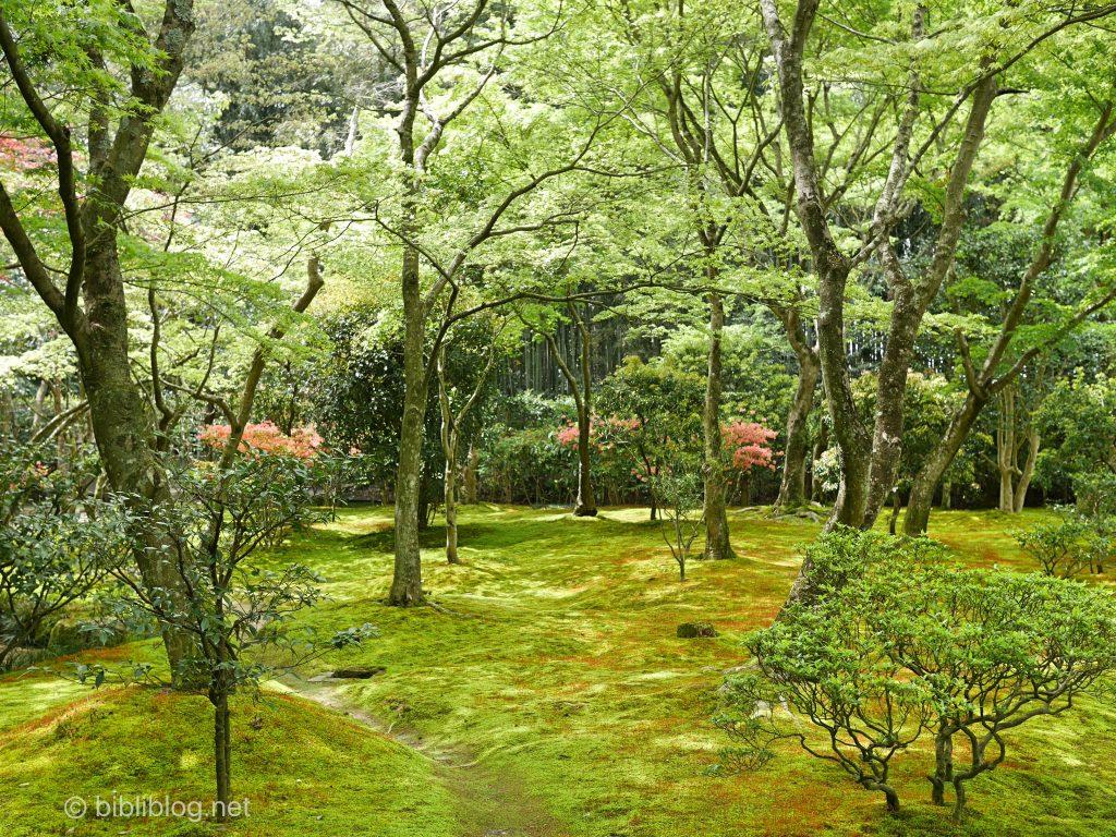 ginkakuji-nature-kyoto