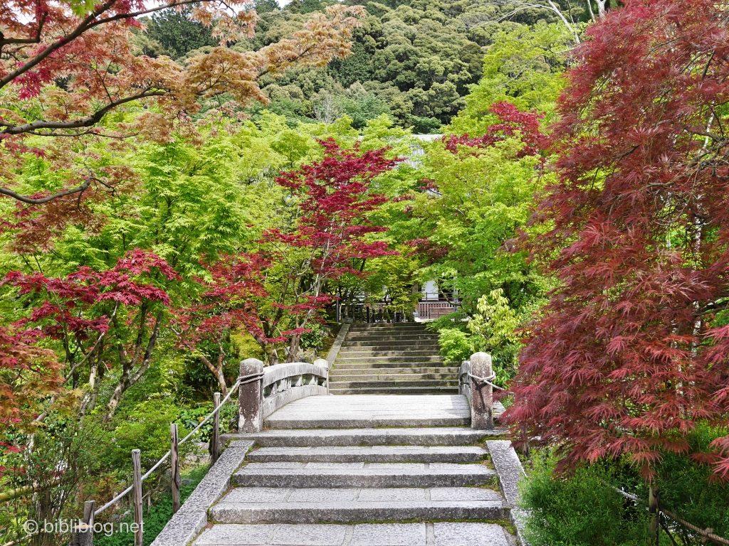 zenriji-escalier