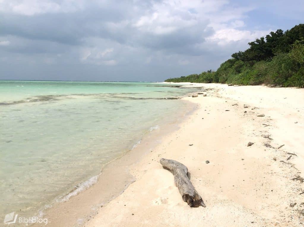 Iriomote-plage-sable-etoile