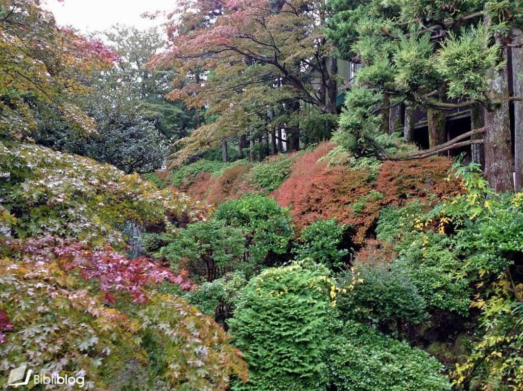 Hakone-automne