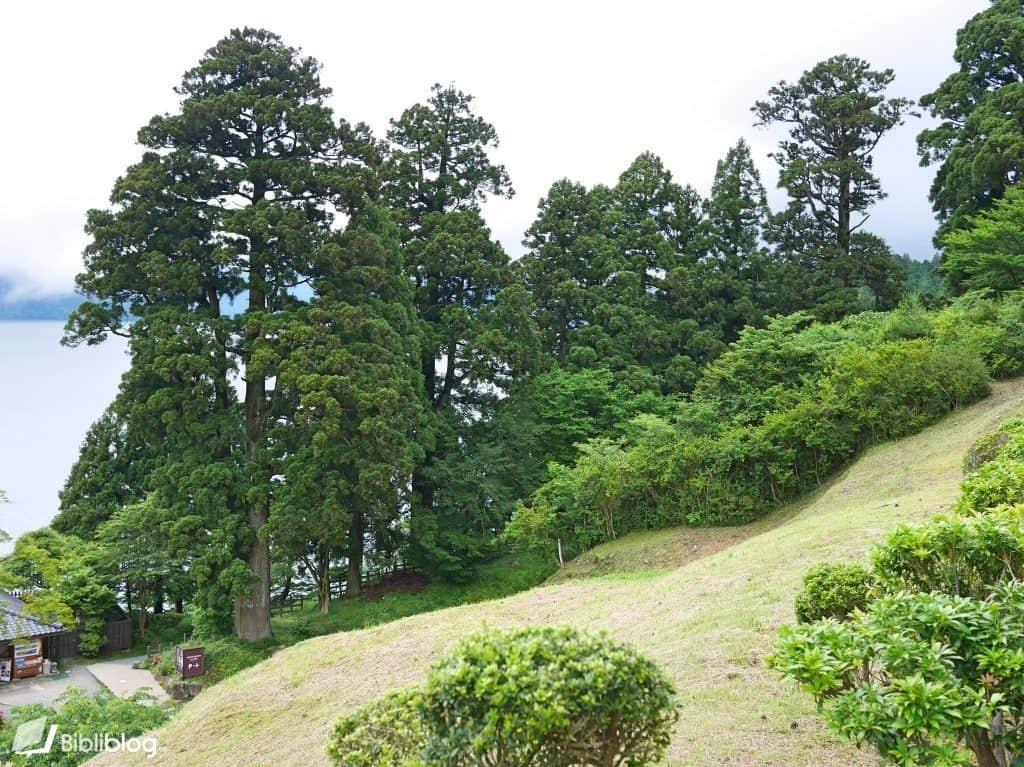 Sekisho-hakone
