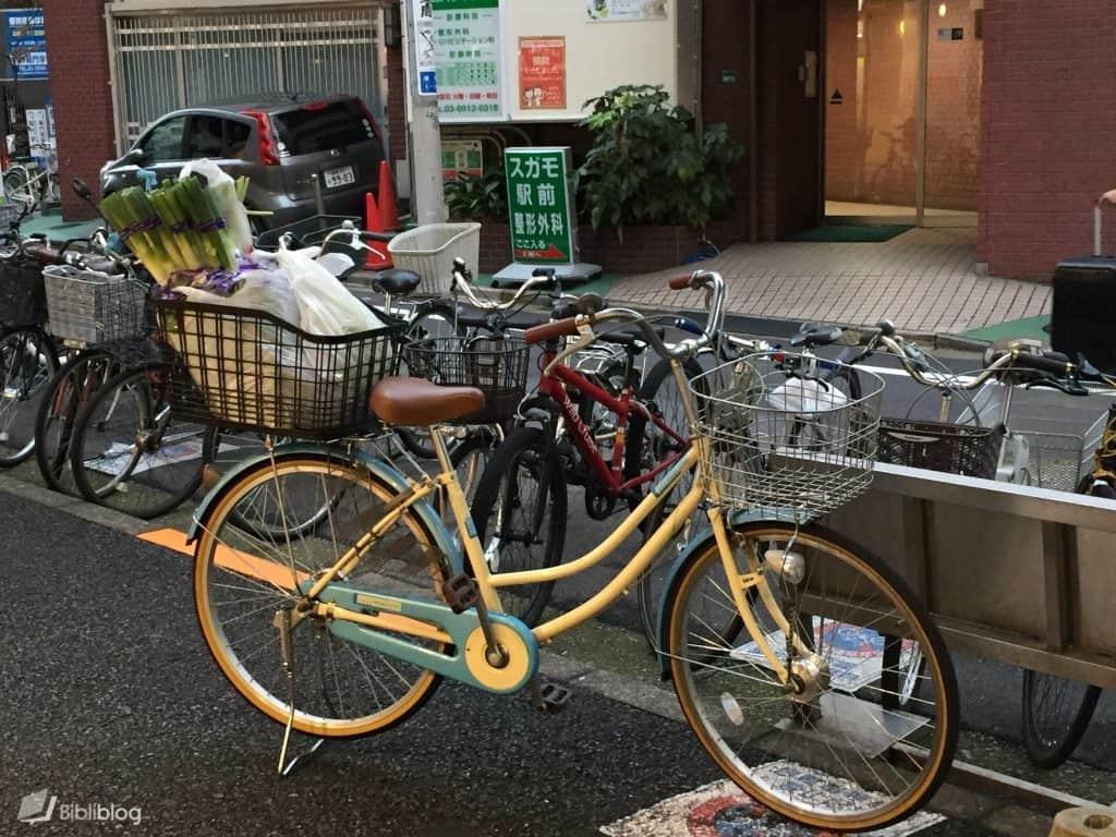 Vélo-plein-abandonné
