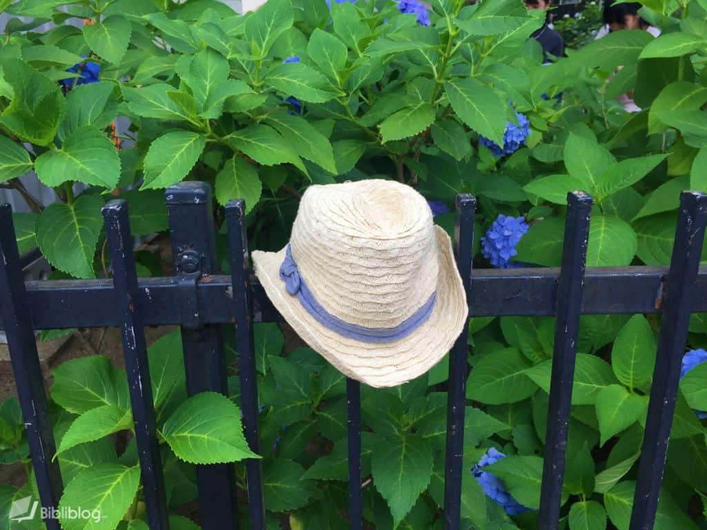 chapeau-trouvé