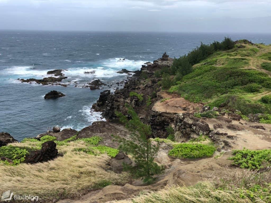 Maui-route