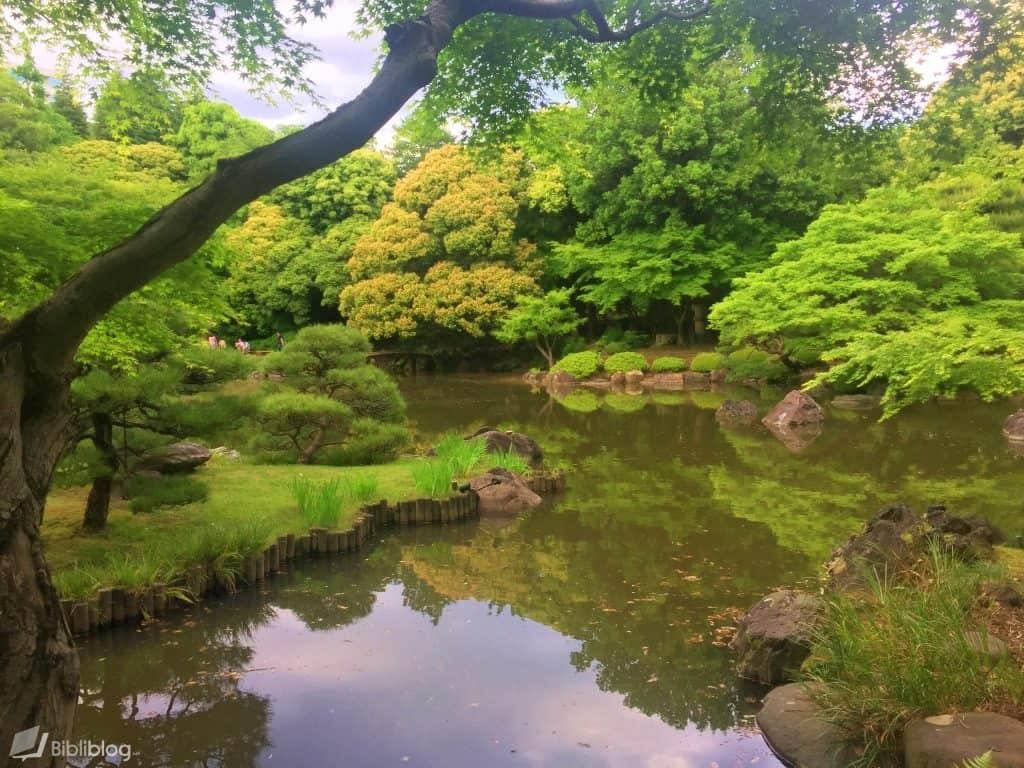 Kyu-furukawa-bassin