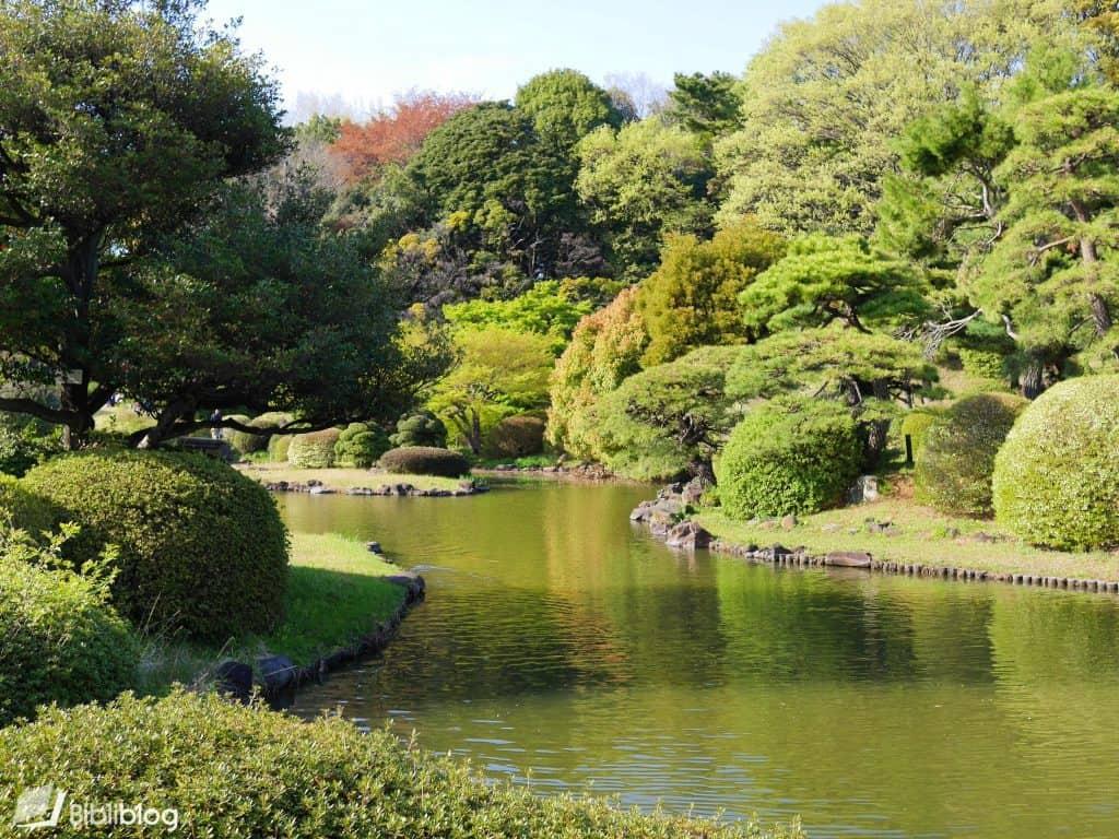 Tokyo-jardin-botanique